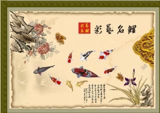 彩艺锦鲤图片