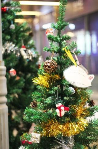 圣誕樹上的圣誕夜圖片