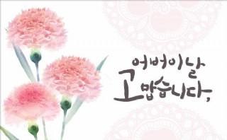 韩国康乃馨PSD